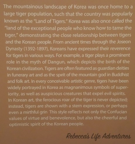 About-Tigers in East Asia-1