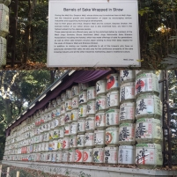 Meiji Shrine-2