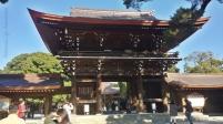 Meiji Shrine-4