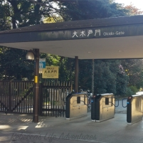 Shinjuku Geyon Garden 1