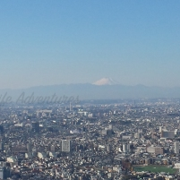 Mt. Fuji in the distance.